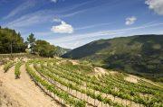 Jusqu'à - 30 % dans la Drome !  Rhône-Alpes