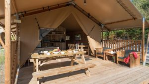 Glamping Forest camp Safari tent
