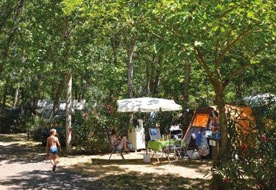LES MIMOSAS-Les emplacements du camping LES MIMOSAS-PORTIRAGNES