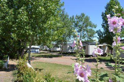 LA GRANDE VALLEE-Les mobil-homes du camping LA GRANDE VALLEE-TRANCHE SUR MER