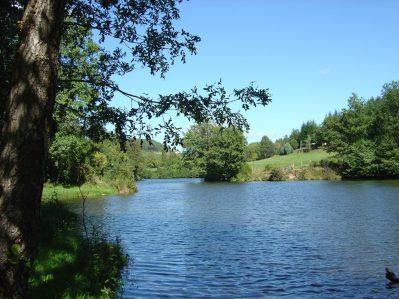 LE CHAMBOURLAS-Un camping en bord de lac das Departement Ardèche-SAINT VINCENT DE DURFORT