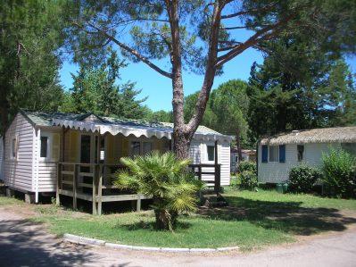 L'EDEN HOTEL DE PLEIN AIR-Les mobil-homes du camping L'EDEN HOTEL DE PLEIN AIR-GRAU DU ROI