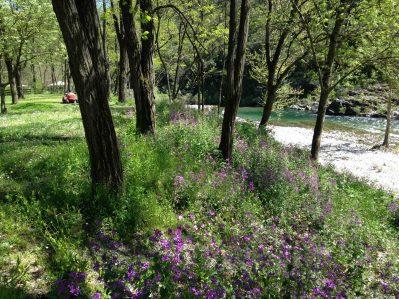 LES GORGES DE L'HERAULT-Un camping fleuri-SUMENE