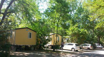CAMPING DU PONT D'AVIGNON-Les mobil-homes du camping CAMPING DU PONT D'AVIGNON-AVIGNON