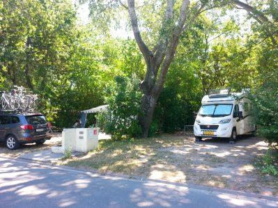 CAMPING DU PONT D'AVIGNON-Les emplacements du camping CAMPING DU PONT D'AVIGNON-AVIGNON