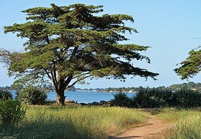 KER EDEN-Accès direct à la plage pour le camping KER EDEN-LARMOR BADEN