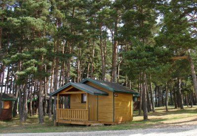 LE PETIT BOIS-Les chalets du camping LE PETIT BOIS-RUYNES EN MARGERIDE