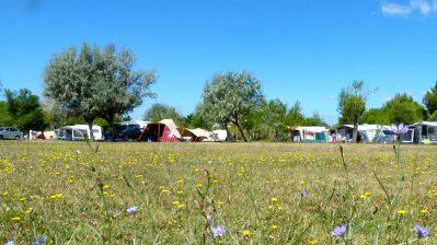 FELIX DE LA BASTIDE-Les emplacements du camping FELIX DE LA BASTIDE-SAINT MITRE LES REMPARTS