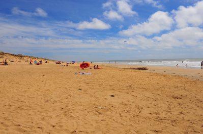 LA PAREE DU JONC-La plage-SAINT JEAN DE MONTS