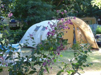 LE CLAPAS-Un camping fleuri-SALAVAS