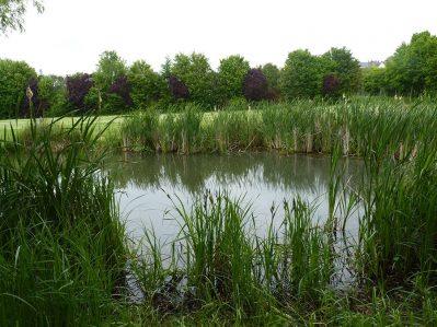 CAMPING MUNICIPAL-Un camping en bord d'étang das Departement Indre-et-Loire-PREUILLY SUR CLAISE