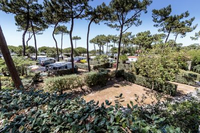 BOIS SOLEIL-Les emplacements du camping BOIS SOLEIL-SAINT GEORGES DE DIDONNE