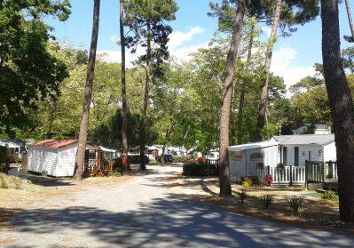 LE DAUPHIN-Un parc locatif ombragé la Charente-Maritime-SAINT GEORGES DE DIDONNE