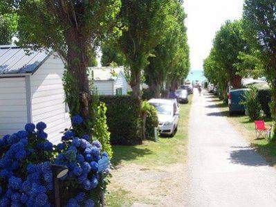 LES SAULES-Le camping LES SAULES, das Departement Finistère-FORET FOUESNANT