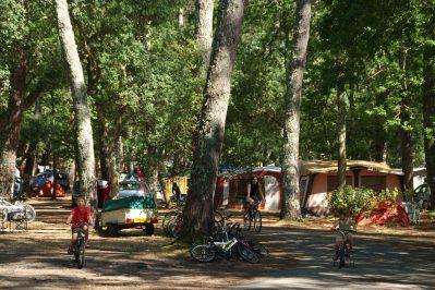 LES CHEVREUILS-Le camping LES CHEVREUILS, das Departement Landes-SEIGNOSSE