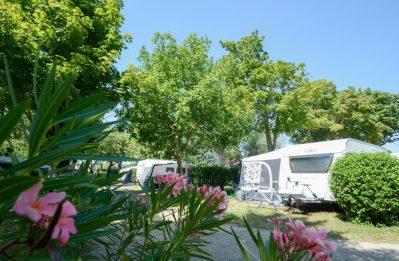 L'OASIS DU VERDON-Un camping en pleine nature-AUPS
