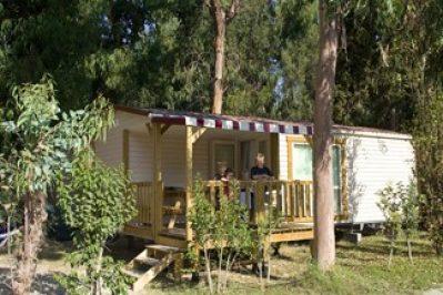 L'ARINELLA BIANCA-Les mobil-homes du camping L'ARINELLA BIANCA-GHISONACCIA