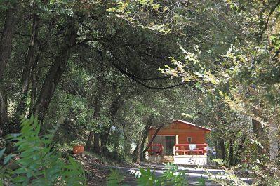 LA CROIX CLEMENTINE-Les chalets du camping LA CROIX CLEMENTINE-CENDRAS