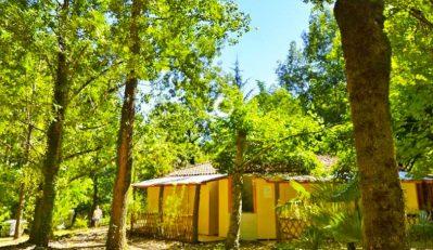 ISIS EN CEVENNES-Un camping en pleine nature-SAINT JULIEN DE LA NEF