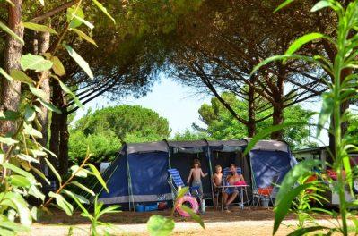 BON PORT-Les emplacements du camping BON PORT-LUNEL