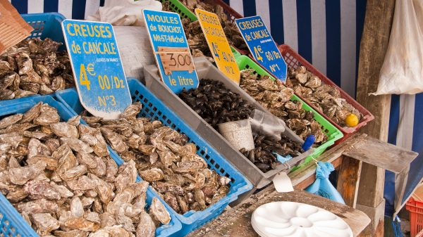 Cancale oysters at the market