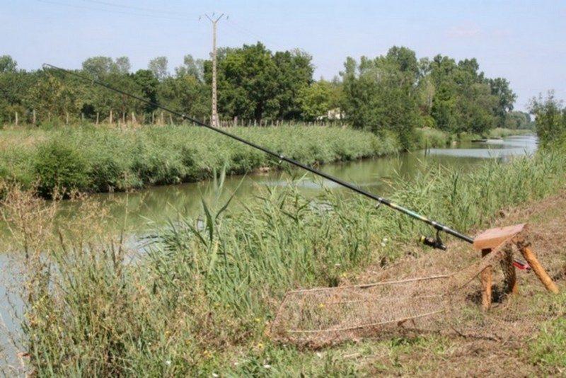 LE LIDON-Accès direct à la rivière im Departement DDeux-Sévres-SAINT HILAIRE LA PALUD