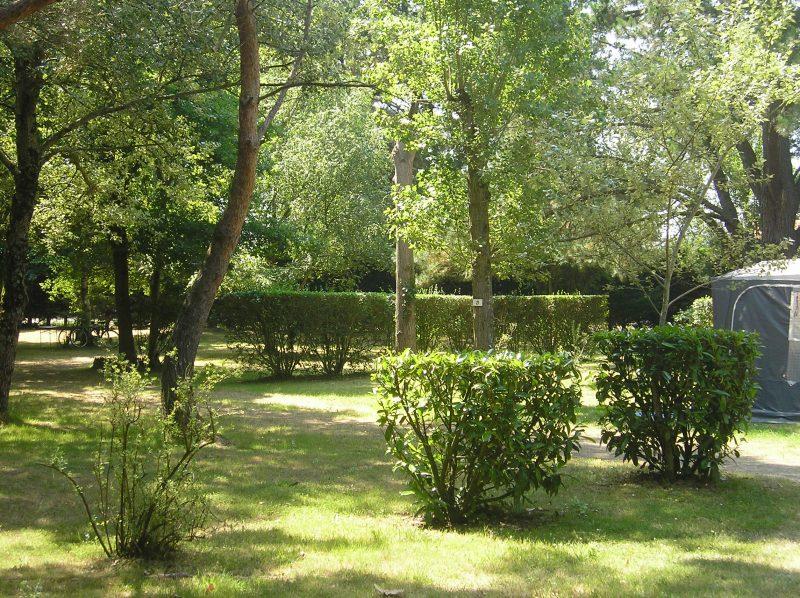 DOMAINE DES RENARDIERES-Un camping en pleine nature-NOTRE DAME DE RIEZ