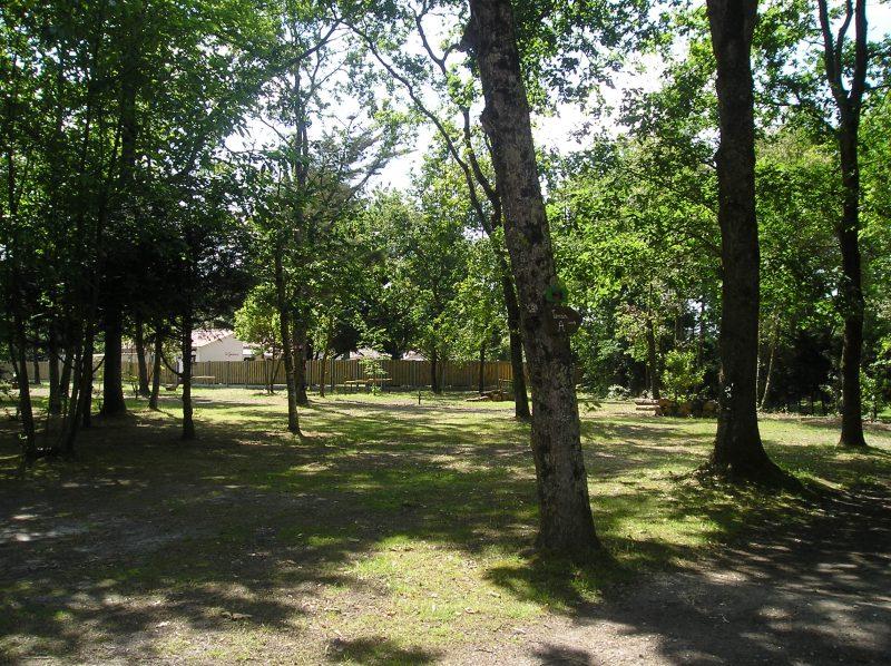 DOMAINE DES RENARDIERES-Les emplacements du camping DOMAINE DES RENARDIERES-NOTRE DAME DE RIEZ