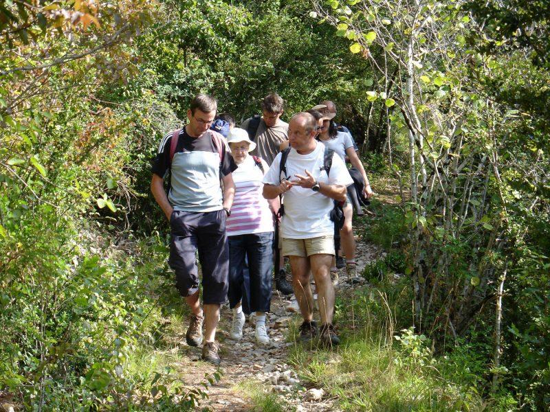 LES 2 VALLEES-Un camping en pleine nature-NANT