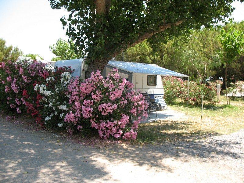 BEAU RIVAGE-Les emplacements du camping BEAU RIVAGE-MEZE