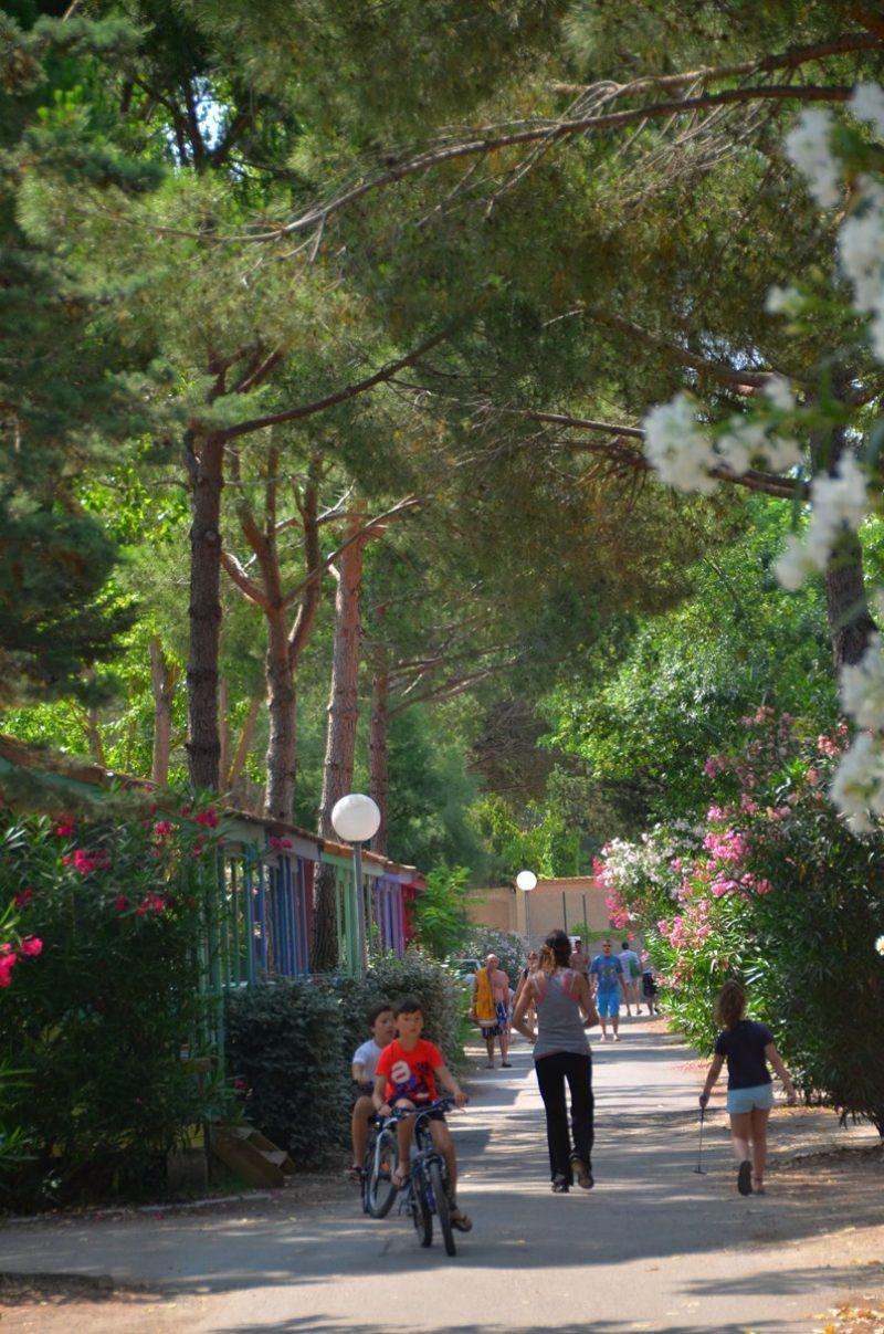 L'EDEN HOTEL DE PLEIN AIR-Un parc locatif ombragé das Departement Gard-GRAU DU ROI