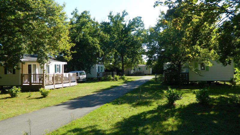 CAMPING LES PEUPLIERS-Un parc locatif ombragé l'Indre-et-Loire-MONTLOUIS SUR LOIRE