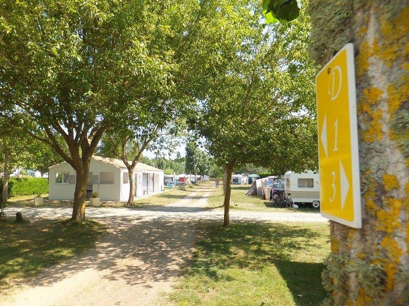LE MONTET D'OLERON-Un camping en pleine nature-DOLUS D'OLERON