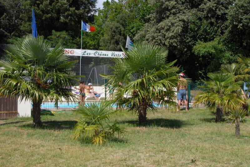 LES CHENES VERTS-Le camping LES CHENES VERTS, das Departement Charente-Maritime-MESCHERS SUR GIRONDE