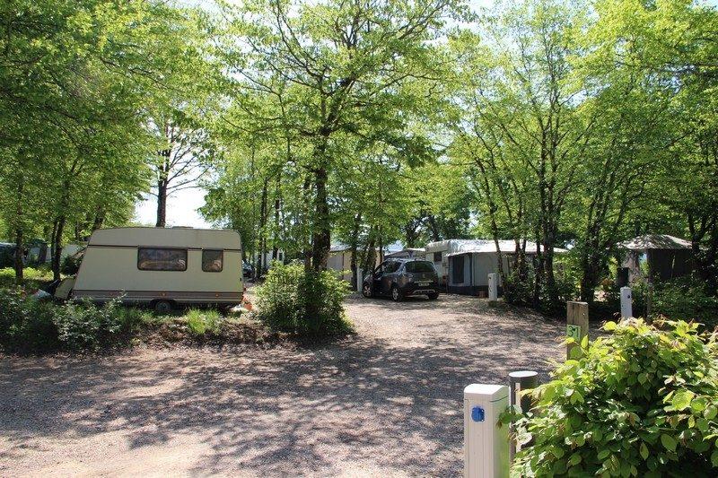 LA GRANGE DU PIN-Les emplacements du camping LA GRANGE DU PIN-TREFFORT CUISIAT