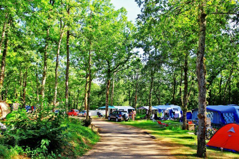 DOMAINE DE FROMENGAL-Les emplacements du camping DOMAINE DE FROMENGAL-BUISSON DE CADOUIN