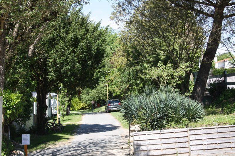 LES ORMEAUX-Un camping en pleine nature-SAINT PALAIS SUR MER