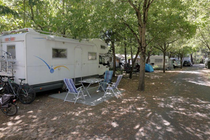 ACTIV'LOISIRS LES PINS-Les emplacements du camping ACTIV'LOISIRS LES PINS-TREMBLADE