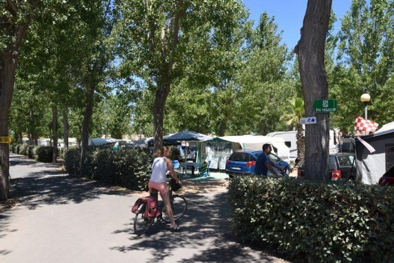 CLUB LE NAPOLEON-Le camping CLUB LE NAPOLEON, l'Hérault-VIAS